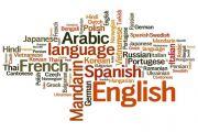 اللغة العربية و التعدد اللغوي في الجزائر